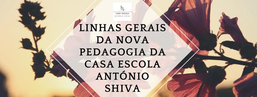 Linhas gerais da nova pedagogia da Casa Escola António Shiva